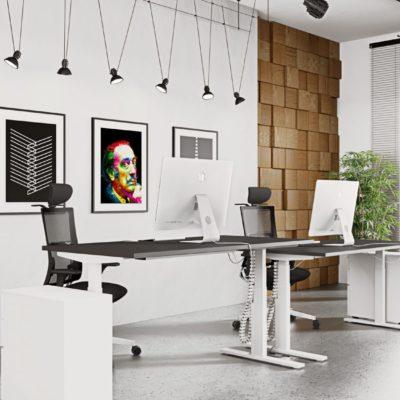 leap sit stand desk