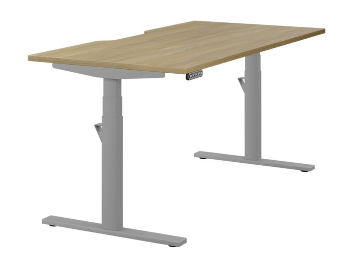 Leap Electric Sit-Stand Desk